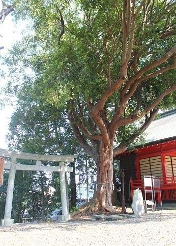 玉前神社④