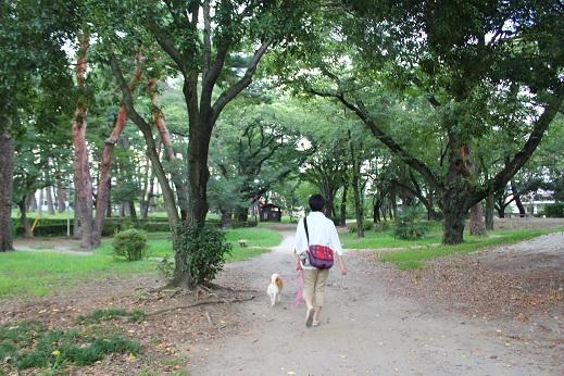 敷島公園④