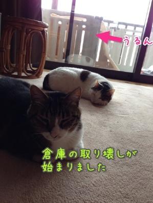 fc2blog_20140421100421a65.jpg