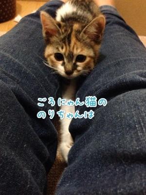 fc2blog_20140515202352f3c.jpg