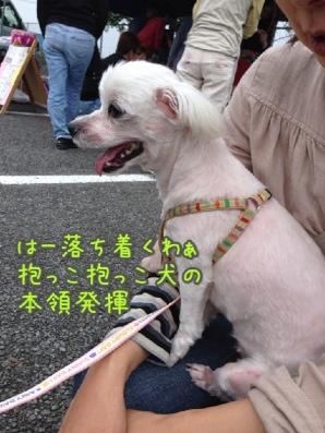 fc2blog_201405181939178b1.jpg