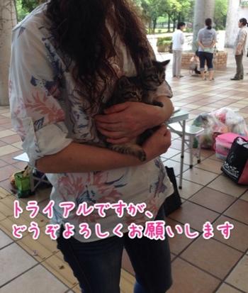 fc2blog_20140629213329947.jpg