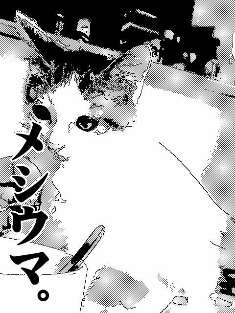 nobunobu1200154.jpg