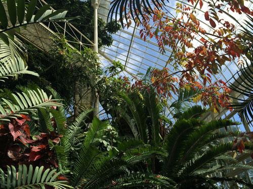 国立植物園20