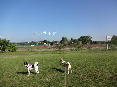 DSC06613-2.jpg