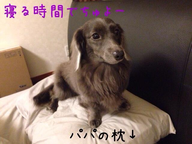 2014032009180882f.jpg