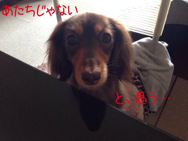 20140331195548e32.jpg