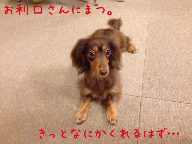 20140514091004602.jpg
