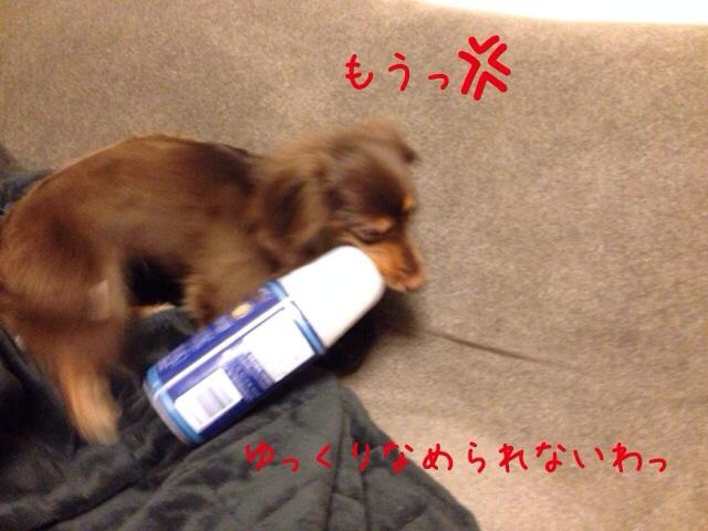 20140625111801dbf.jpg