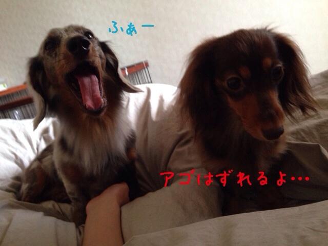 20140709201357fa8.jpg