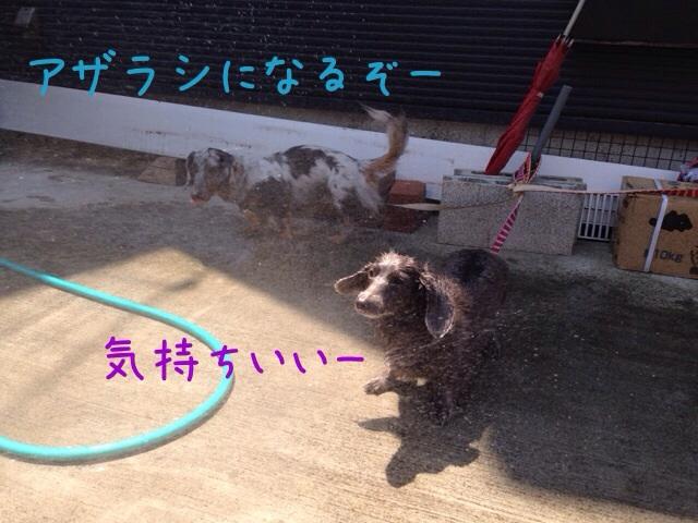 201407311946364ad.jpg