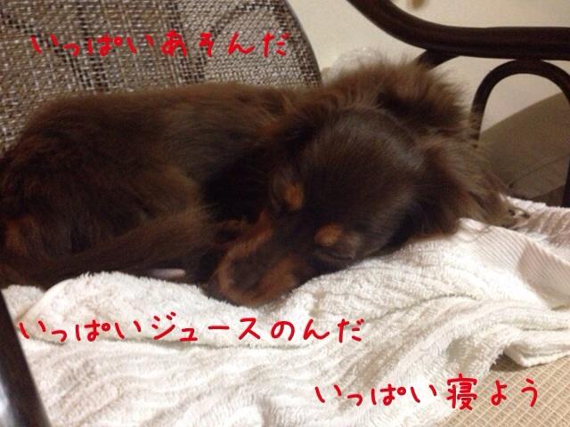 20140731194727e30.jpg