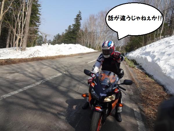 DSC09910_convert_20140429203731.jpg