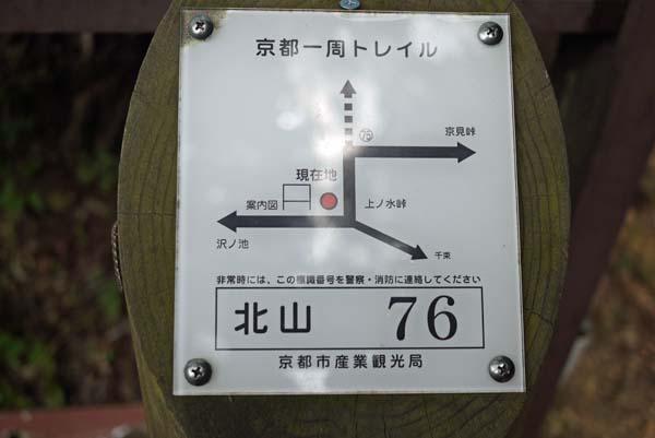 140729sawa12b.jpg