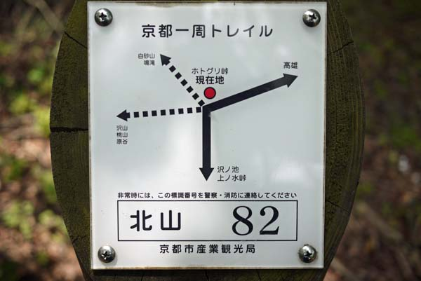 140729sawa39b.jpg