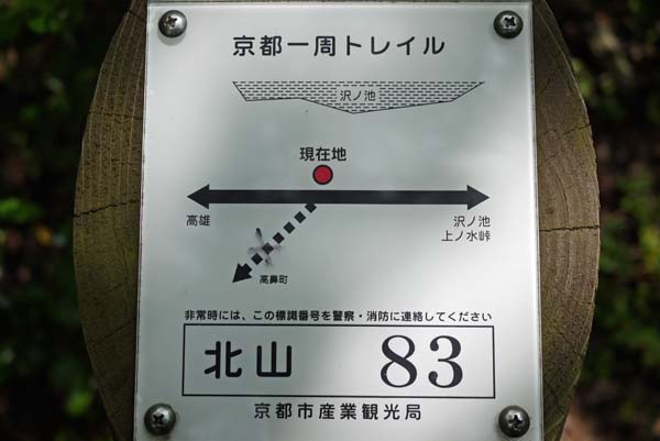 140729sawa44b.jpg