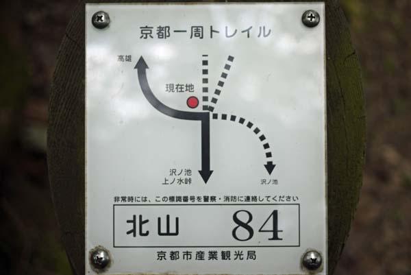 140729sawa47b.jpg