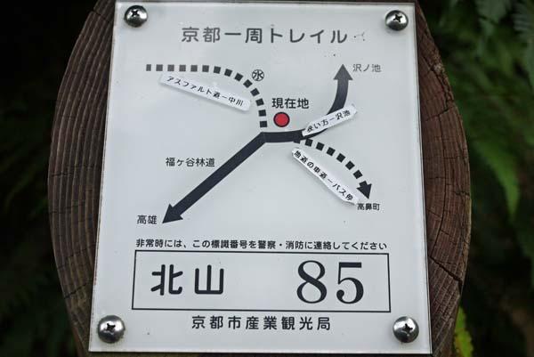 140729sawa53b.jpg