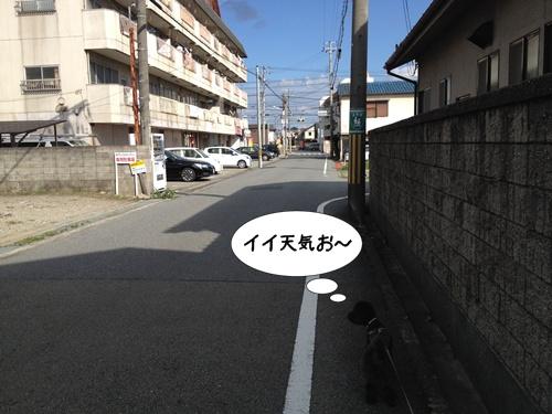 20140831214307a3e.jpg