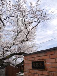 和歌山2014-4-2-4