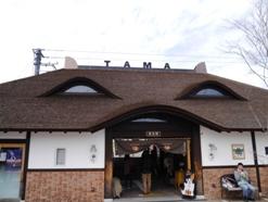 和歌山2014-4-2-1