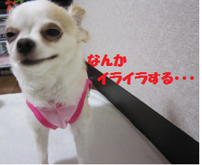 14711p3.png