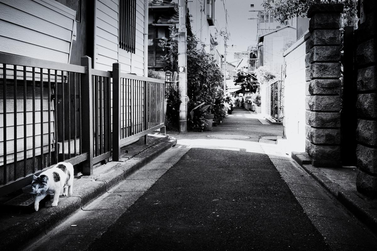 140412京島17