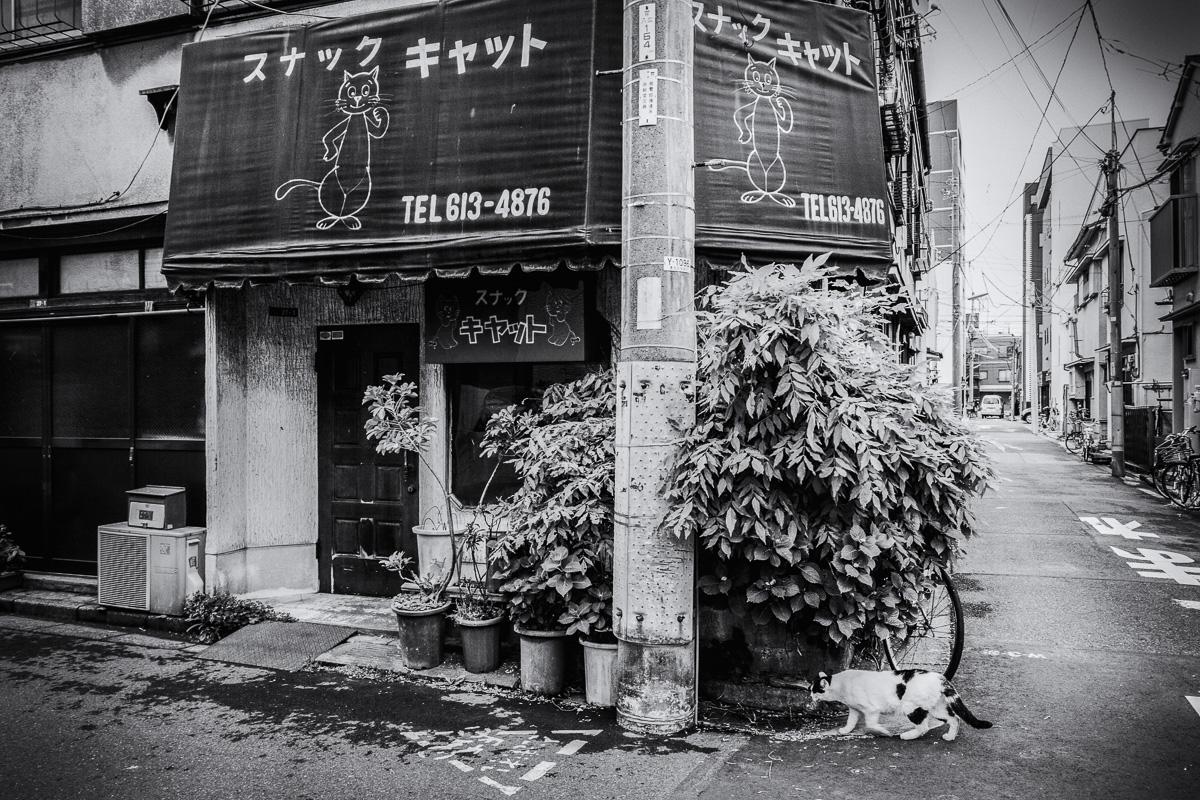 140506京島Ⅱ04