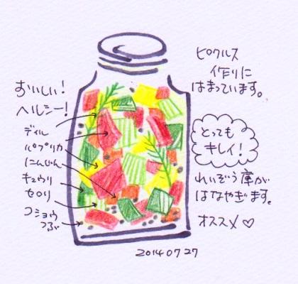 20140727ピクルス