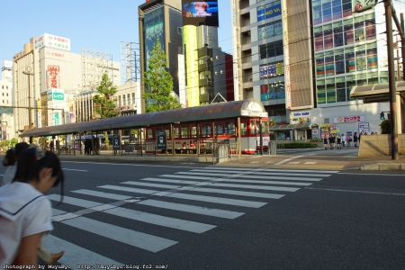 DSC02679_S.jpg