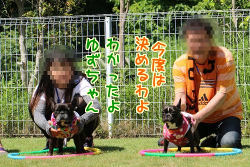 20140606-6.jpg