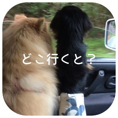 fc2blog_20140430222105f52.jpg