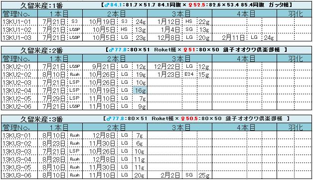 久留米産 幼虫管理表2013 1番~3番