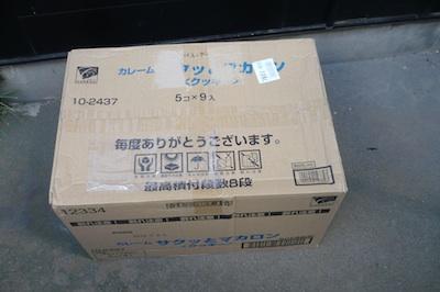 P1000713z.jpg