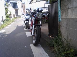 SA3D0600.jpg