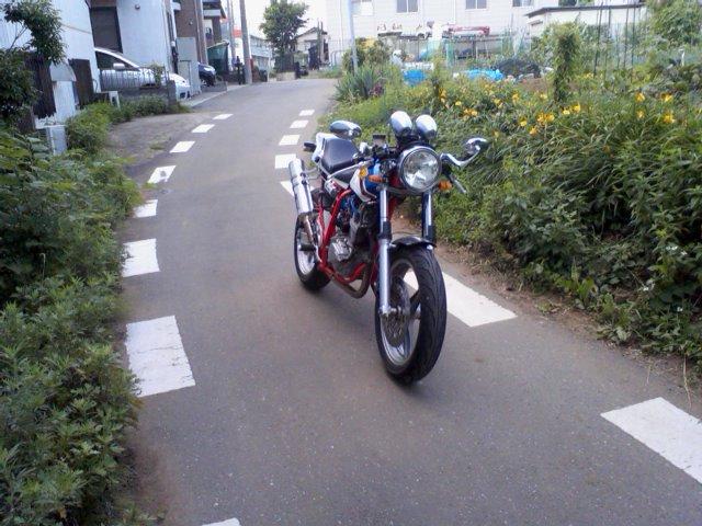 SA3D0731.jpg