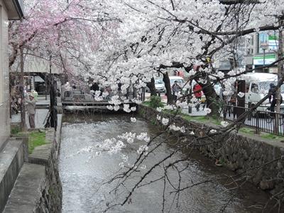 20140331 京都DSCN4232