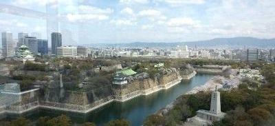 260402大阪城桜