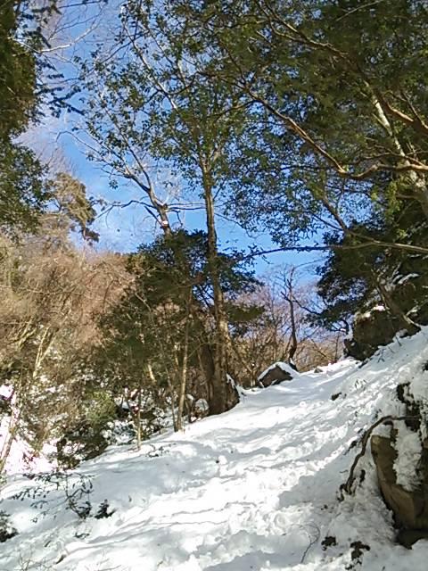 七曲滝へ2