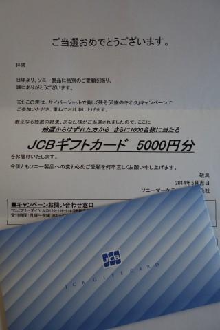 DSC00732ss.jpg