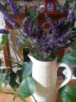 lavenderhome0614