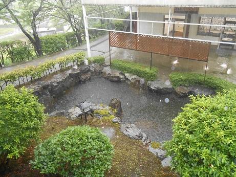 雨の日の霊園 池