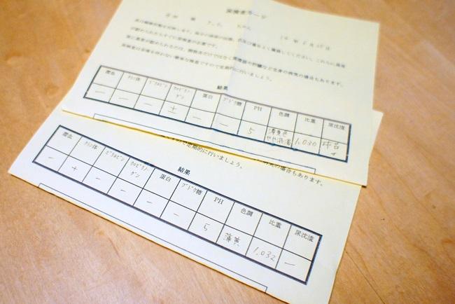 コピー ~ DSC06976