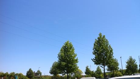 1405-kyusyu-661.jpg