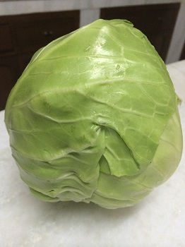 cabbage-feb14.jpg