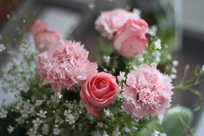 flower-rose.jpg