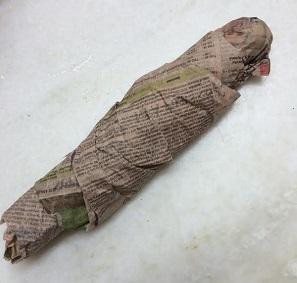 japanese-cucumber1.jpg