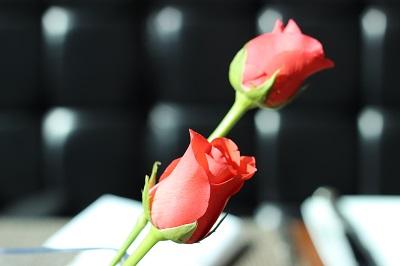 leela-flower060314.jpg