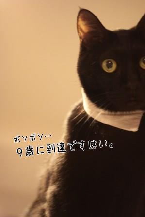 しろう店長20140405-01