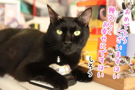 しろう店長20140817-01
